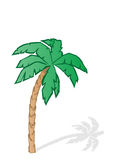 Vector illustration a green tropical palm tree Royalty Free Stock Images