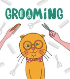 Vector illustration. Grooming pets. Cat haircut royalty free illustration