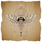 Vector illustration with hand drawn dead head moth and Sacred geometric symbol on vintage paper background with torn edges sign. Abstract mystic sign. Sepia vector illustration