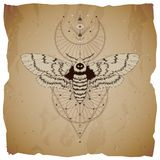 Vector illustration with hand drawn dead head moth and Sacred geometric symbol on vintage paper background with torn edges. Abstract mystic sign. Sepia linear royalty free illustration