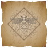 Vector illustration with hand drawn Dragonfly and Sacred geometric symbol on old paper background with torn edges. Abstract mystic. Sign. Sepia linear shape vector illustration