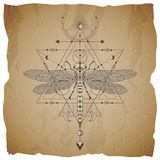 Vector illustration with hand drawn dragonfly and Sacred geometric symbol on vintage paper background with torn edges. Abstract. Mystic sign. Sepia linear shape royalty free illustration