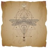 Vector illustration with hand drawn dragonfly and Sacred geometric symbol on vintage paper background with torn edges. Abstract my. Stic sign. Sepia linear shape vector illustration