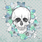 Vector illustration with hand drawn human skull, clematis flower Stock Photography