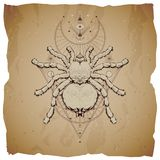 Vector illustration with hand drawn insect and Sacred geometric symbol on vintage paper background with torn edges. Abstract mysti vector illustration