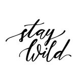 Vector illustration with hand-drawn lettering `Stay wild`  on white. Trendy ethnic poster. Calligraphic design. Boho style Royalty Free Stock Image