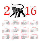 Vector illustration of hand drawn monkey - the simbol of 2016. January calendar. Royalty Free Stock Image