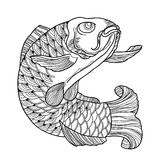 Vector illustration with hand drawn outline black koi carp isolated on white background.  Japanese ornate fish in contour style. Royalty Free Stock Image