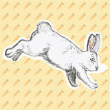 Vector illustration of hand drawn rabbit. On background with carrot Stock Images