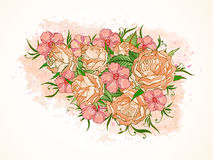 Vector illustration with hand drawn roses, flowers and leaves on a background with textured watercolor elements. Stock Images