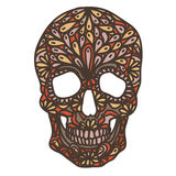 Vector illustration with Hand Drawn Skull Royalty Free Stock Photos