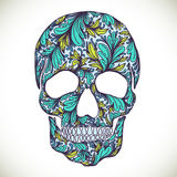 Vector illustration with Hand Drawn Skull Stock Images
