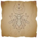 Vector illustration with hand drawn wasp and Sacred geometric symbol on vintage paper background with torn edges. Abstract mystic. Sign. Sepia linear shape. For royalty free illustration