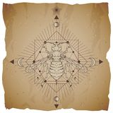 Vector illustration with hand drawn wasp and Sacred geometric symbol on vintage paper background with torn edges. Abstract mystic. Sign. Sepia linear shape. For stock illustration