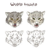 Vector illustration of hand drawn wolves heads. Two of them are painted, two other are scribbled. This illustration is  on Royalty Free Stock Image