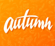 Vector illustration of hand lettering label - autumn - with doodle brunches and leaves.  Stock Photos
