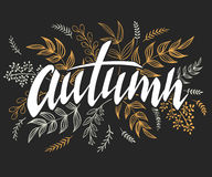 Vector illustration of hand lettering label - autumn - with doodle brunches and leaves.  Royalty Free Stock Photo
