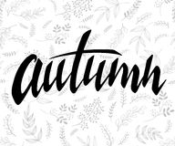 Vector illustration of hand lettering label - autumn - with doodle brunches and leaves.  Royalty Free Stock Image