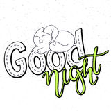 Vector illustration of hand lettering text - good night. There is cute fluffy cat on grunge background Stock Photography