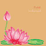 Vector illustration handmade drawing pastel chalks lotus flower Stock Photos