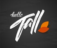 Vector illustration: Handwritten lettering composition of Hello Fall with autumn leaves on chalkboard background. Vector illustration: Handwritten lettering Stock Illustration