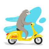 Vector illustration of happy cute sloth riding on scooter. Royalty Free Stock Image