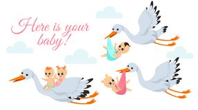 Vector illustration of happy flying storks with newborn babys. Stork birds carrying babyboy and babygirl in bags in vector illustration
