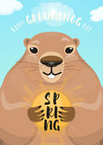Vector illustration of happy groundhog day design with cute rodent Royalty Free Stock Images