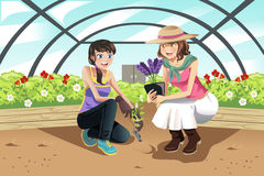Planting in greenhouse. A vector illustration of happy teenagers planting in a greenhouse Stock Photos