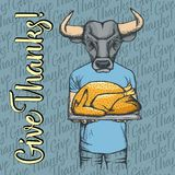 Vector illustration of Thanksgiving bull concept Royalty Free Stock Photo