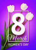 Vector illustration Happy Women`s Day March 8 holiday greeting card. With a bouquet of white tulips on pink purple background with frame stock illustration