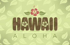 Vector illustration of Hawaii and Aloha words Stock Image