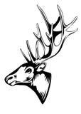 Elk head Stock Image