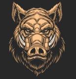 Head ferocious boar stock illustration