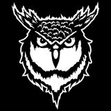 Vector illustration of a head of an owl. Illustration of a head of an owl Royalty Free Stock Photos