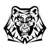 Vector illustration head tiger on a white background. Vector illustration head ferocious tiger on a white background Stock Images