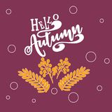 Vector illustration Hello autumn Colorful and vivid composition of text hello autumn and hand-drawn leaves. Calligraphy background Royalty Free Illustration