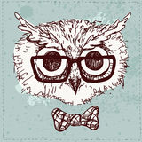 Vector Illustration of Hipster Owl,. Vector Illustration of Hipster Owl vector illusrtration hand drawn Stock Image