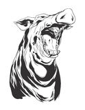 Vector illustration with hog head. Pig head. Monochromatic logo for your t-shirt Royalty Free Stock Photo