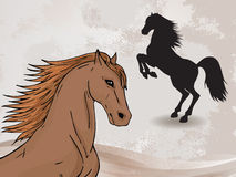 Vector illustration with horse head and silhouette rearing horse. Stock Images