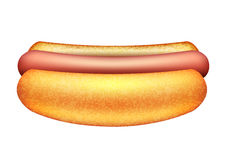 Vector illustration of hot dog Royalty Free Stock Photography