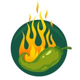 Hot jalapeno or chili peppers. Vector illustration of a hot jalapeno or green chili peppers in fire Royalty Free Stock Photos