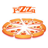 Vector illustration of hot pizza on white Royalty Free Stock Photo