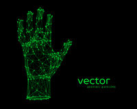 Vector illustration of human arm Royalty Free Stock Photography