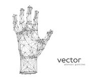 Vector illustration of human arm Royalty Free Stock Images