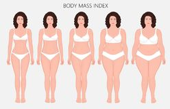 Human body anatomy_Body mass Index of European women from lack o. Vector illustration Human body mass Index, European woman from lack of weight to obesity Front vector illustration