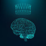 Vector illustration human brain. The structural Royalty Free Stock Image