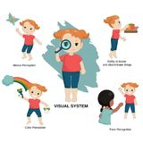Illustration of human senses. Vector illustration of human senses. Visual sensory system: motion perception, ability to locate and discriminate things, color royalty free illustration
