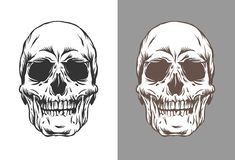 Vector illustration of human skulls in engraving style black and brown color isolated on white and gray background royalty free illustration