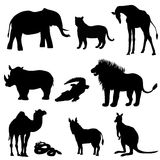 Vector illustration, the image of animals, animals. Black silhouette. Elephant, kangaroo, camel, lion, zebra, rhinoceros, giraffe, Royalty Free Stock Photos